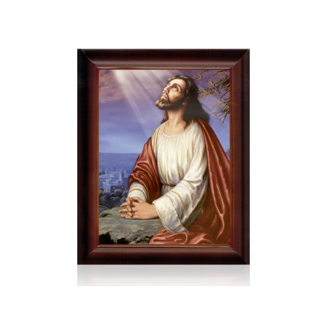 Jesús orando nuevo