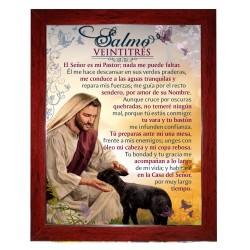 CC100 Salmo 91